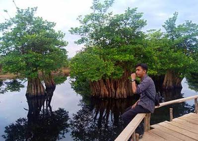pulau kumayan bengkulu