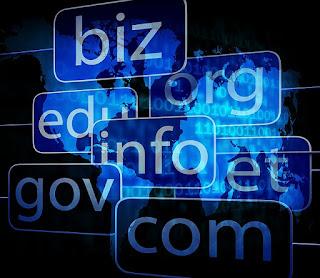 Jenis Jenis Domain di Dunia