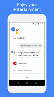 Google Assistant Go interface