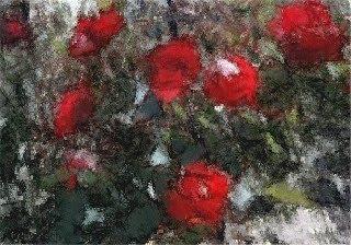 Les roses franques (Toni Arencón i Arias)