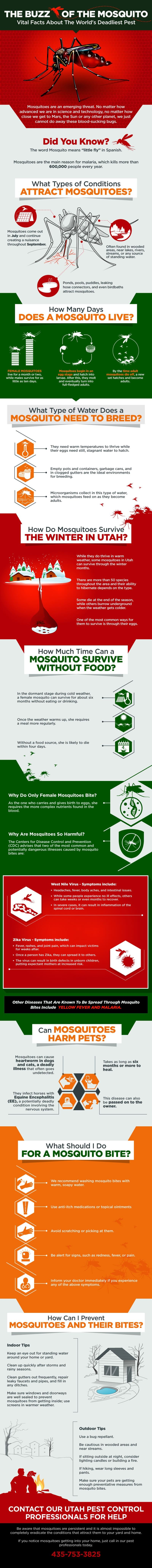The Buzz of the Mosquito #infographic