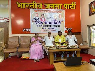 आयुष मंत्री श्री कावरे भाजपा प्रदेश कार्यसमिति की बैठक में वर्चुअल हुए शामिल
