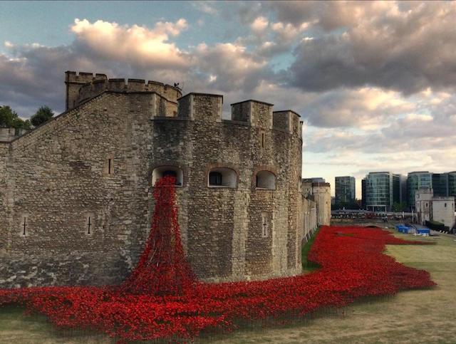Foto mozzafiato della torre di Londra ornata con 888.246 papaveri in ceramica per commemorare la prima guerra mondiale