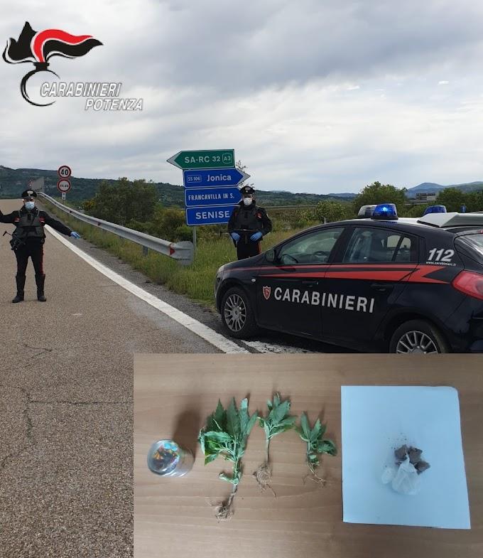 Droga sulla ss 595: arrestato 43enne di Armento (Pz)
