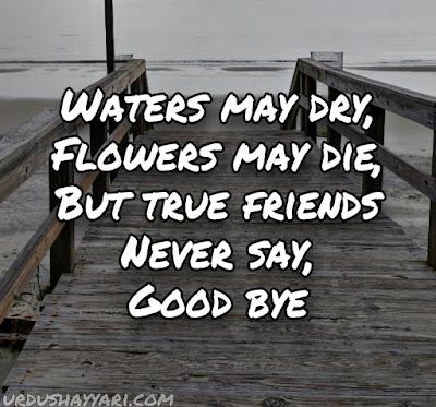 Attitude quotes for friends