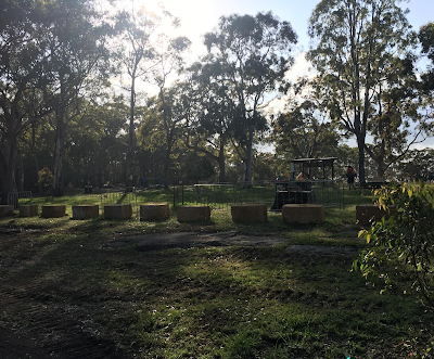 New fences at Oatley Park