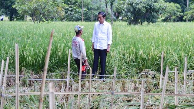 Sindiran Ustadz Tengku: Pemuda Disuruh Jadi Petani, Anak dan Mantunya Diusung Jadi Walikota