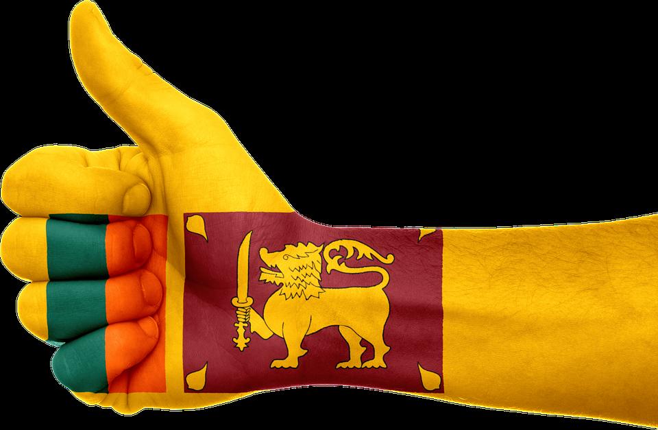 श्रीलंका से जुड़े 24 रोचक और मजेदार तथ्य - Sri Lanka Facts in Hindi,Amazing information and Interesting Facts about Sri Lanka in Hindi - श्रीलंका देश से जुडी जानकारी