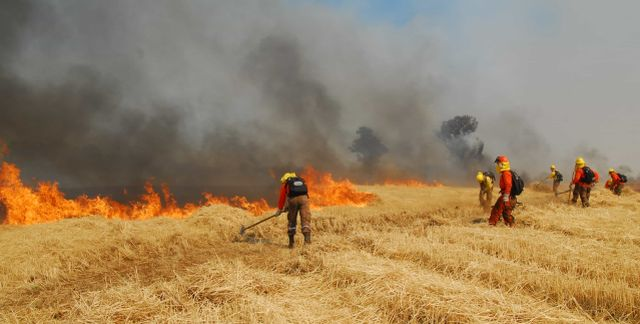 Fuego quemas agrícolas