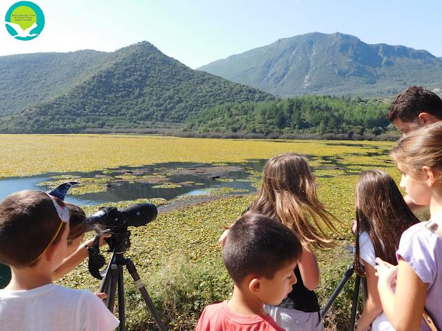 Πραγματοποίηση Πανευρωπαϊκής γιορτής πουλιών στο Έλος Καλοδικίου και Κέντρο πληροφόρησης Αμμουδιάς