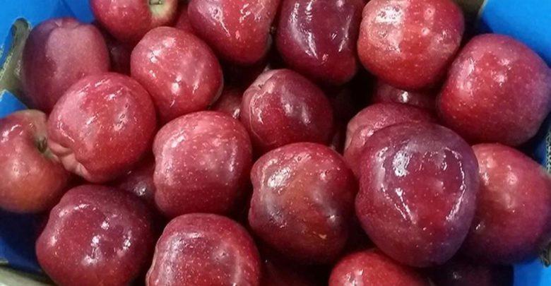 Απάτη στον συνεταιρισμό Αγιάς με 17,5 τόνους μήλα