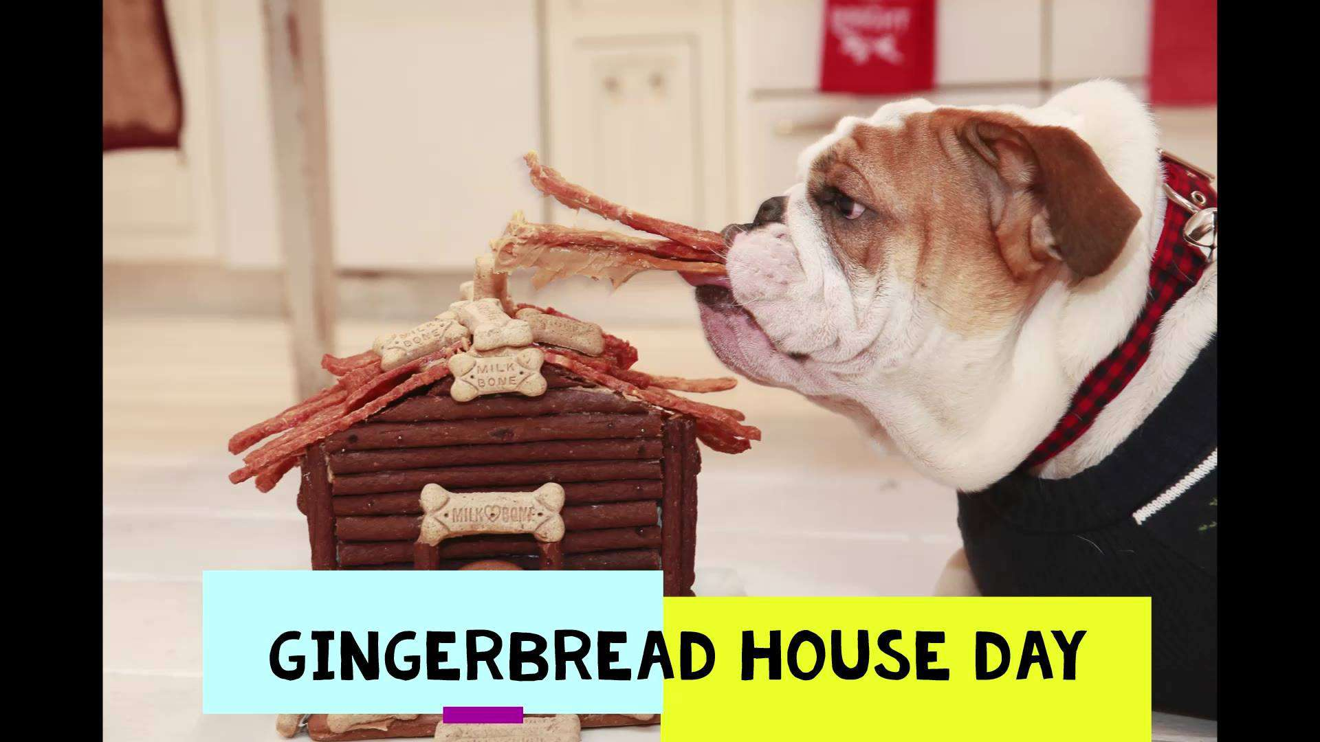 Gingerbread House Day Wishes Awesome Picture