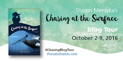 chasing blog tour