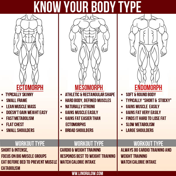 Source Workout And Meal Plan To Gain Muscle Yourviewsite Co