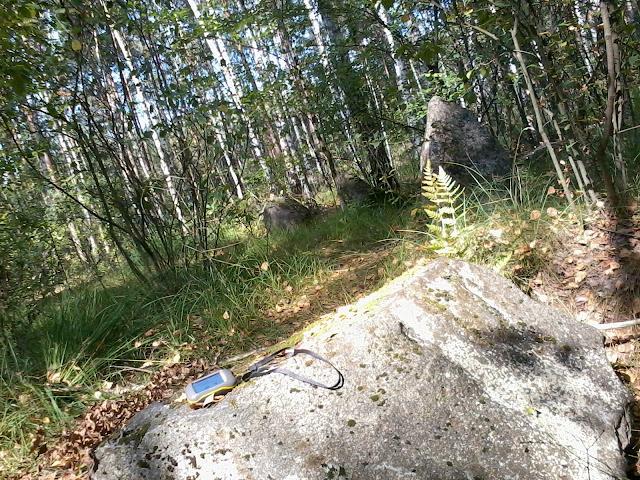 Kamienny krąg w Kobylarni