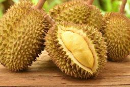 Manfaat Durian dan kulitnya