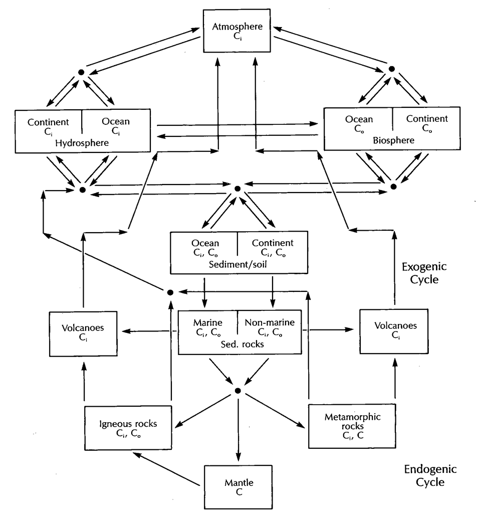 carbon cycle  from holser et al  (1988)  click to enlarge