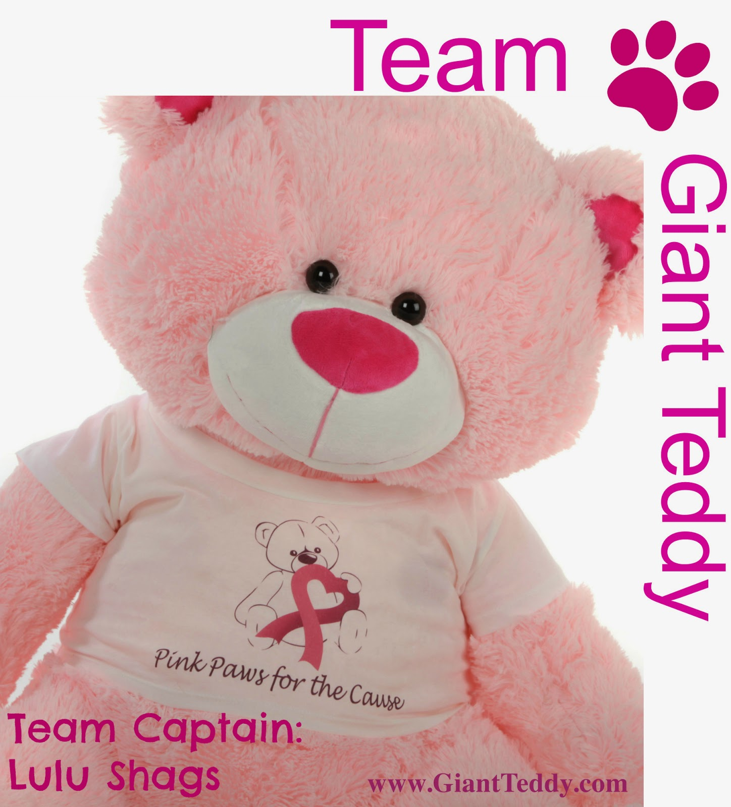 Giant Teddy's Lulu Shags is our Team Captain in the Komen Race for the Cure
