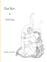 Chat Noir book cover
