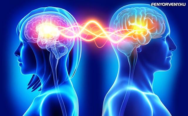 Láthatatlan kapcsolat van az emberi agyak között - állítja egy kutató