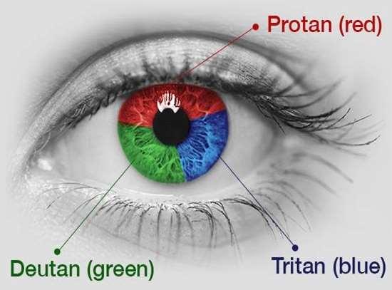 Protans - colour blindness