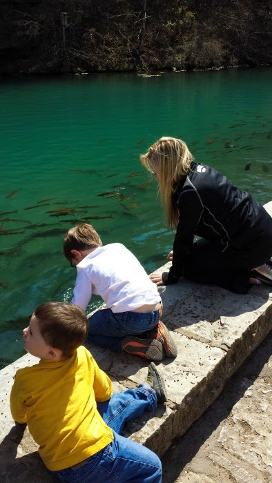 Feeding the fish at the hatchery