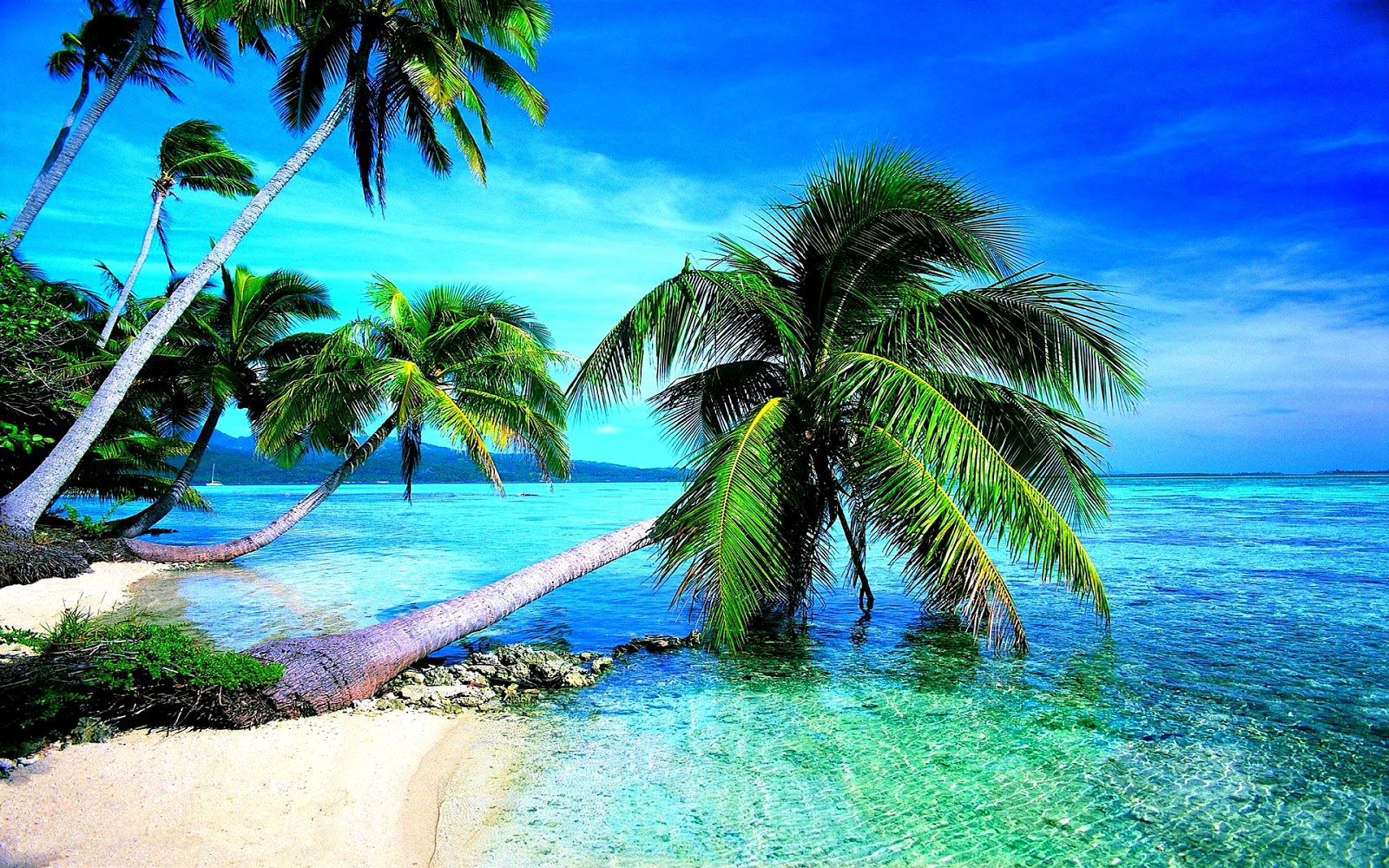 Hd Tropical Island Beach Paradise Wallpapers And Backgrounds: Studio Backgrounds: Most Beautiful Beaches
