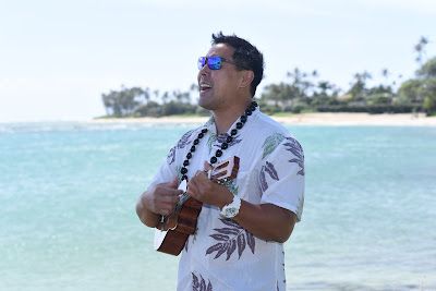 Ukulele Musician