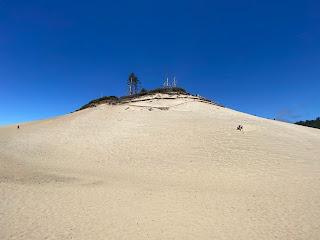 Cape Kiwanda dune.