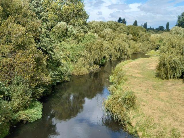 Osorno: Desisten de evaluación de proyecto sobre el río Damas