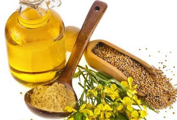 Benefits of mustard seeds for the body
