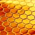 Estoicismo: a filosofia da colmeia, NÃO apenas da abelha.