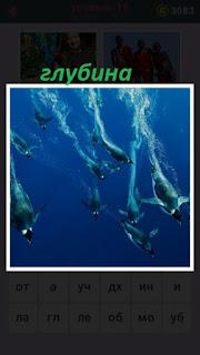655 слов дельфины плывут на глубину 19 уровень