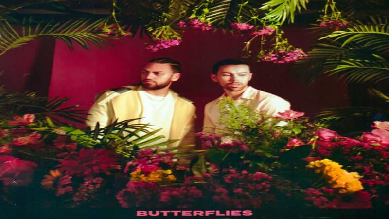 Lirik Lagu MAX feat. Ali Gatie Butterflies dan Terjemahan