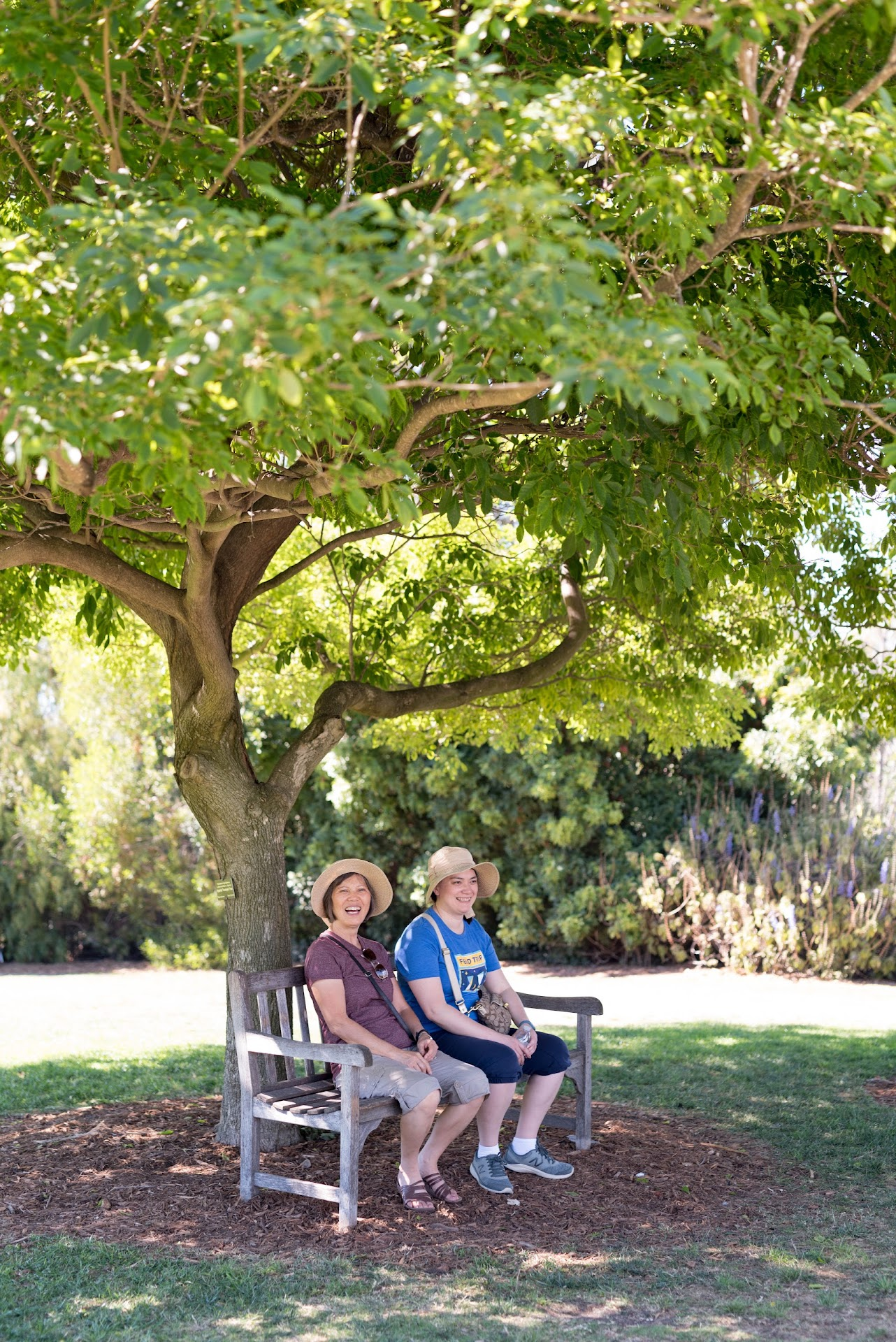 socal, southern california cities, where to visit, what to do, things to do, discover Torrance, south coast botanic garden,