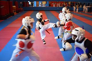 Greatmats Karate Mats Martial Arts Studio