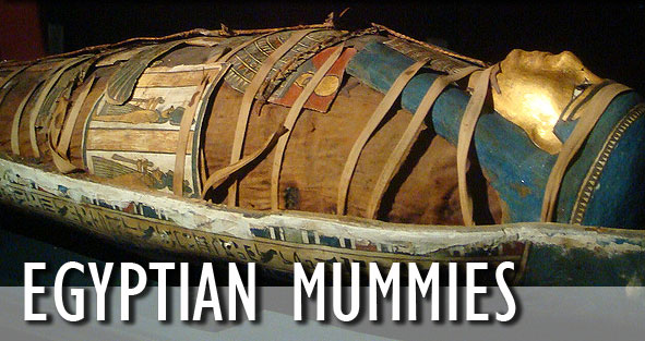 Image result for egyptian mummies