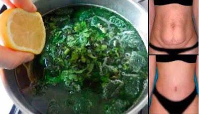 Ramuan hijau pembakar lemak di perut