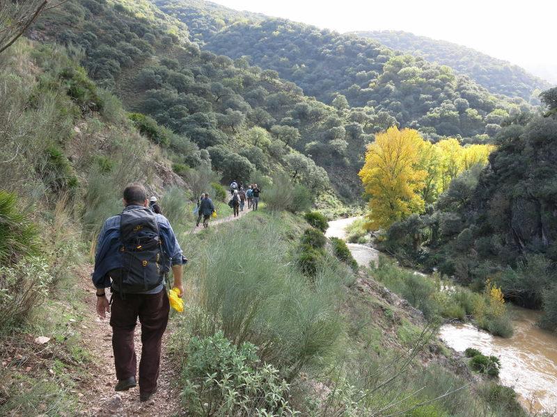 Sendero junto al río en la Serranía de Ronda