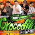 CD (AO VIVO) GIGANTE CROCODILO PRIME NO KARIBE SHOW - DJ PATRESE (17/05/2018)