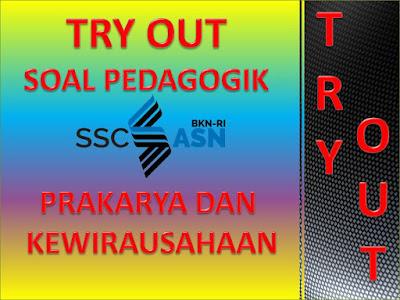 Try Out Soal Pedagodik PPPK Mapel Prakarya dan Kewirausahaan (PKWU)