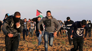 Three Palestinians  have been killed and dozens of other protesters injured in the ongoing demonstrations along the lands east of the besieged Gaza Strip near Israel's fence.