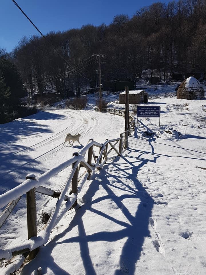 Τσουχτερό κρύο στην Ξάνθη – Πυκνό χιόνι στην ορεινή περιοχή