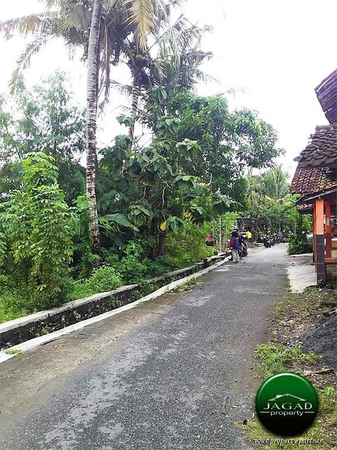 Tanah Sawah dekat Pemda Bantul