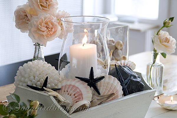 Nautical Table Decoration With Beach Finds Shells Sea
