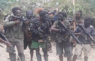 KKB Papua Pantas Dibasmi
