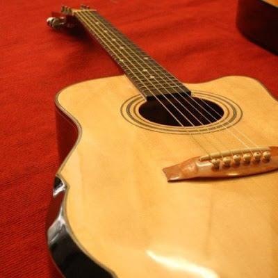 Đàn Guitar HD300v