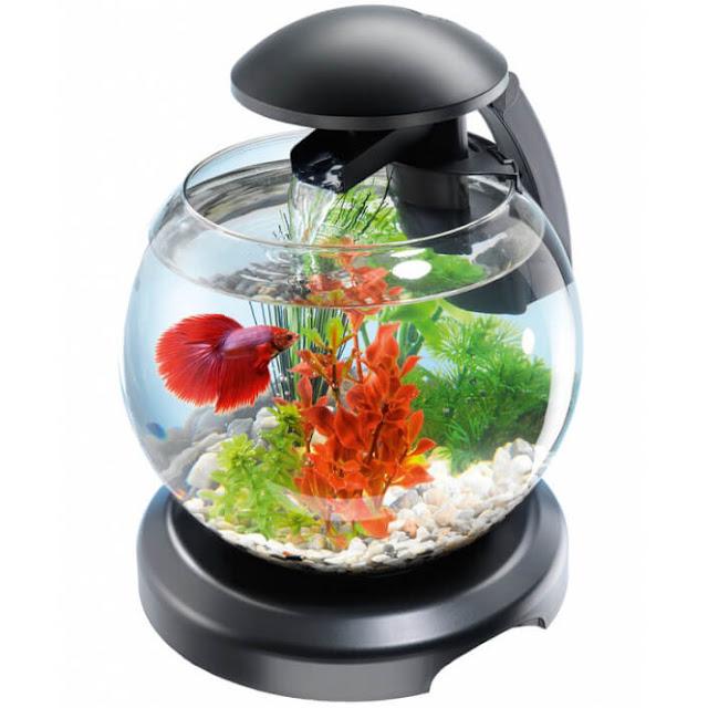 аквариум цена комплекса
