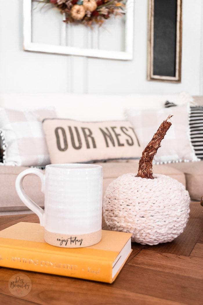 mug, book and fluffy sweater pumpkin on coffee table