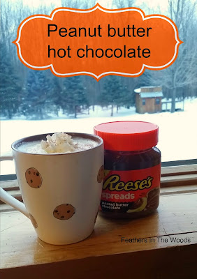 easy peanut butter hot chocolate recipe